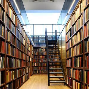 Библиотеки Берегового